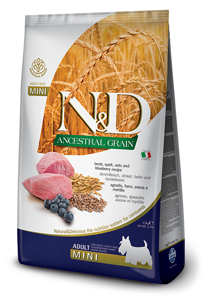 N&D Low Grain Dog Adult Mini Lamb & Blueberry 2,5 kg