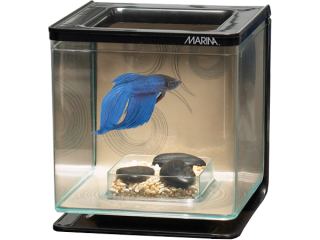 Akvárium betta kit ZEN 2l