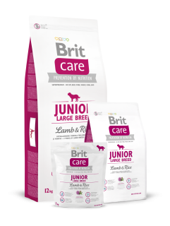 Brit care junior large